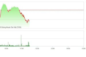 Chứng khoán sáng 11/3: Thanh khoản mất hút, thị trường từ từ trượt dốc