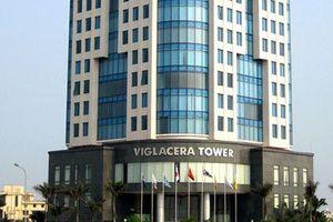 Công ty con của Gelex đã mua 27 triệu cổ phiếu của Viglacera từ khối ngoại