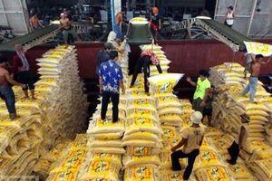 Lúa thơm Việt Nam sốt trên đất Thái, thị trường gạo thế giới vẫn khó lường