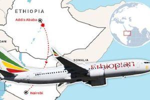Hơn 100 máy bay Boeing 737 MAX 8 bị nhận lệnh cấm bay