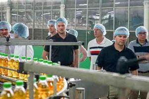 Cơ hội xuất khẩu đậu nành của Canada sang Việt Nam