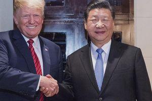 Vì sao cuộc gặp gỡ cấp cao Donald Trump - Tập Cận Bình bị đột ngột trì hoãn?