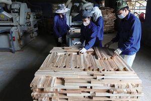 Gia tăng liên kết sản xuất, chế biến gỗ