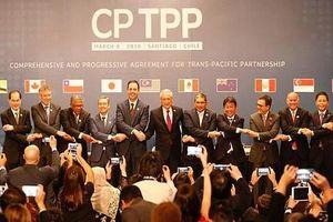 CPTPP mở rộng cửa hợp tác cho Việt Nam và Canada