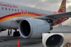 Thêm máy bay hoãn chuyến vì hành khách ném xu cầu may