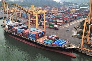 Nhiều cảng biển 'thay da đổi thịt' sau cổ phần hóa