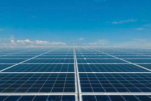 Sắp vận hành tổ hợp 3 nhà máy điện mặt trời lớn nhất Việt Nam