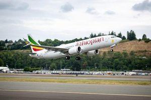 CEO Ethiopian Airlines: 'Cơ trưởng gặp khó khăn khi kiểm soát máy bay'