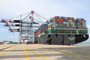 Đại gia Vũ Văn Tiền xin đầu tư trung tâm logistics và bến cảng Cái Mép hạ, tổng vốn đầu tư hơn 30.000 tỷ