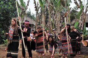 Lễ trỉa hạt của người Tây Nguyên tại 'Ngôi nhà chung'