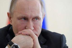 'Tưởng mơ hóa thật', đường ống Nga đón tín hiệu dậy sóng Balkan