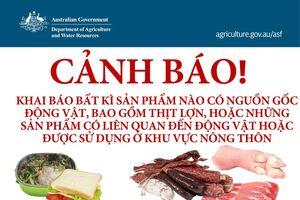Có thể bị truy tố nếu mang thịt bị nhiễm bệnh vào Úc