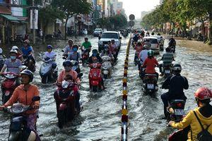 Chuyên gia Mỹ từng cảnh báo về ngập lụt ở ĐBSCL