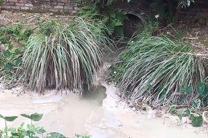 Bỏ ruộng vì trạm trộn bê tông xả thải ô nhiễm ở huyện Nam Sách