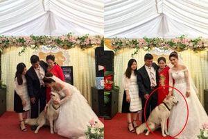 MC gọi nhà gái lên chụp ảnh cùng cô dâu, vậy là 'đại boss' chớp ngay cơ hội chiếm trọn spotlight