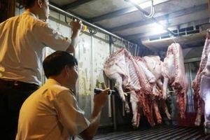 TP.HCM quyết liệt ngăn dịch tả lợn châu Phi