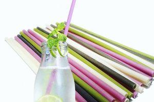 Chị em hào hứng với các sản phẩm xanh thay thế ống hút nhựa