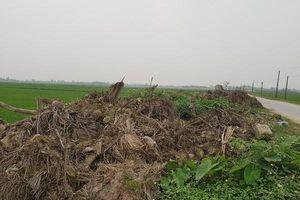 Hậu Lộc (Thanh Hóa): Dự án gần trăm tỷ đổ thải không đúng vị trí