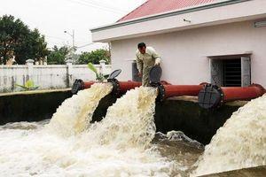 Vĩnh Phúc: Đủ nước tưới dưỡng cho lúa Xuân