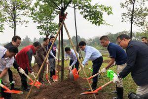 Triết lý kinh doanh ẩn sau 3000 cây hoa anh đào được AEON trồng tại Hà Nội