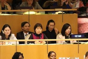 Việt Nam tham gia tổ chức sự kiện tại LHQ về đóng góp của phụ nữ