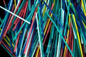 Các nước 'tuyên chiến' với đồ nhựa dùng một lần