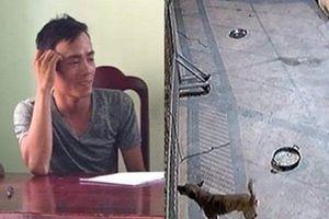 'Đạo chích' liều lĩnh chạy xe máy vào nhà cán bộ công an trộm 4 cây mai, 1 con chó