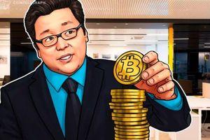 Giá tiền ảo hôm nay (15/3): Tom Lee tiếp tục dự đoán Bitcoin tăng giá