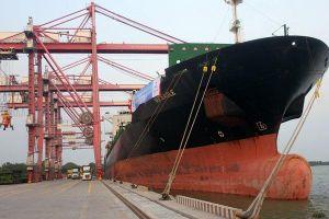 Mở tuyến vận tải biển đi thẳng từ Việt Nam đến Úc
