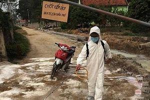 Nghệ An: Phát hiện thêm ổ dịch tả lợn châu Phi