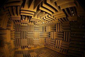 Cấu trúc lạ kỳ của căn phòng cách âm không ai có thể ở bên trong quá 45 phút