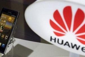 Đề phòng cấm vận, Huawei phát triển hệ điều hành riêng cho mình