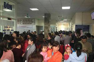 19 trường của Thuận Thành (Bắc Ninh) được miễn phí xét nghiệm sán lợn