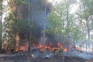 Cháy bãi phế liệu giữa rừng tràm uy hiếp nhiều hộ dân
