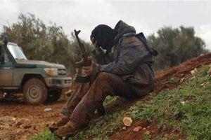 Syria: Liều lĩnh tấn công Aleppo, Hama, Idlib, khủng bố lĩnh kết đắng