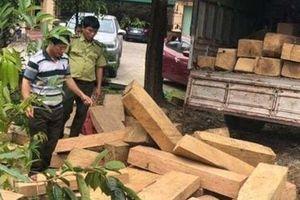 Hàng chục phách gỗ lậu trên đường ra Bắc tiêu thụ