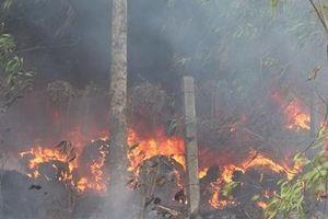 Cháy bãi rác phế liệu giữa rừng tràm, uy hiếp nhiều hộ dân