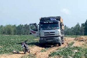 Chủ nợ thuê người 'giam lỏng' xe chở 60 tấn dưa