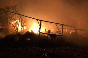 Cháy lớn kho xưởng vải rộng 1.000m2, 13 căn nhà bị cháy xém ở Sài Gòn