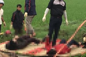 Thái Bình: Phát hiện đôi vợ chồng tử vong dưới mương nước