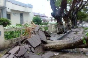 Bão Idai càn quét Zimbabwe, 64 người thiệt mạng