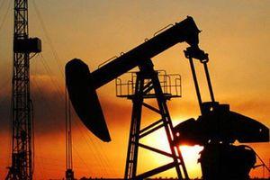 Giá dầu hôm nay 18/3: Tăng nhẹ