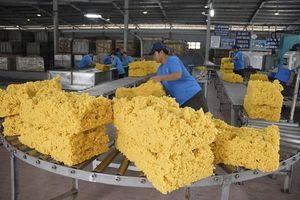 Trong tháng 2, xuất khẩu cao su của Việt Nam giảm mạnh