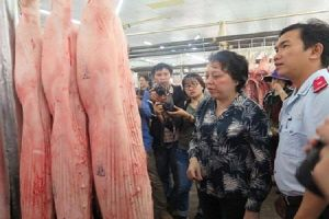 FAO khuyến nghị Việt Nam công bố dịch tả lợn châu Phi ở tình trạng khẩn quốc gia
