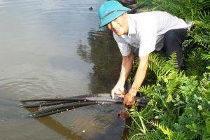 Bảo vệ nguồn nước trước những thách thức biến đổi khí hậu ở Hà Tĩnh - Bài 2: Duy trì và phát triển bền vững nguồn nước