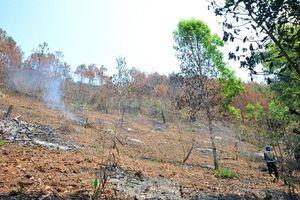 Dân bỗng gặp họa nhân tai vì chủ rừng thuê người ngoài đốt dọn thực bì vào cao điểm mùa khô