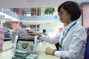 Sau 5 tháng, Ngân hàng Nhà nước quay trở lại phát hành tín phiếu