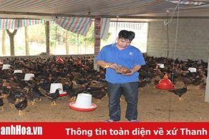 Khó khăn trong phát triển chăn nuôi theo hướng an toàn sinh học