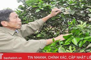 Người 'Bí thư lão làng' của chi bộ thôn vùng giáo ở Thạch Hà