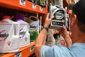 Tòa án liên bang Mỹ kết luận thuốc diệt cỏ Roundup của Monsanto gây ung thư